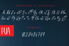 Howdy Magnolia | A Display Typeface Product Image 5