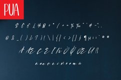 Howdy Magnolia | A Display Typeface Product Image 3