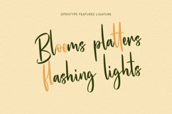 Hunnyflash Handwritten Font Product Image 5