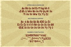 Web Font Imedison - Display Font Product Image 4
