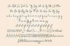 Impatiens - handwritten script font Product Image 4