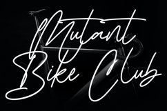Ironhartley Script Font Product Image 3