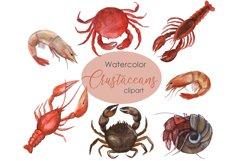 Watercolor Crustacean Clipart. Nautical Clipart Product Image 1