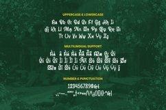 Web Font Jameer Product Image 4