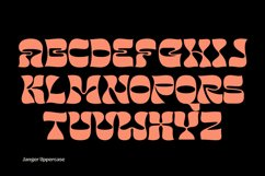 Janger - Display font Product Image 6
