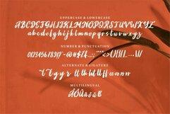 Web Font Jayton - A Beauty Script Font Product Image 5