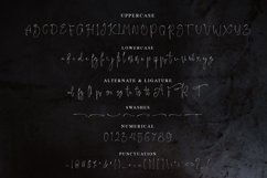 Jelliva Patricia - Signature Script Font Product Image 2