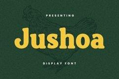 Web Font Jushoa Product Image 1