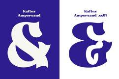 Kaftus Display Serif Font Product Image 4