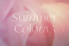 Kindred - Elegant and chic font Product Image 6