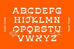KISH Quirky Display Font Product Image 3