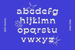 KISH Quirky Display Font Product Image 4