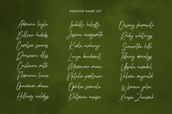 Kristafly Signature Brush Font Product Image 3