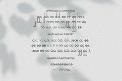 Web Font Ladadida Font Product Image 5