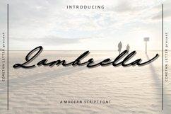Lambrella Product Image 1