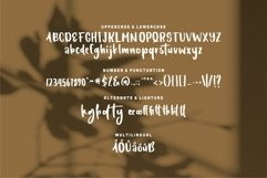 Langston - A Stylish Handwritten Font Product Image 6