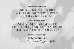 Web Font Laondy Product Image 5