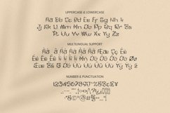 Web Font Leafness Font Product Image 5