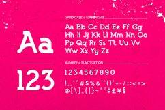LEBRON Slab Typeface Product Image 4