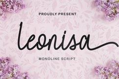 Leonisa Product Image 1