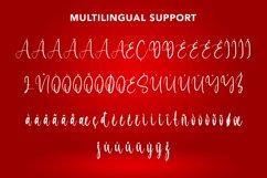 Liberation - Christmas Calligraphy Font Product Image 2