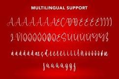 Web Font Liberation - Christmas Calligraphy Font Product Image 2