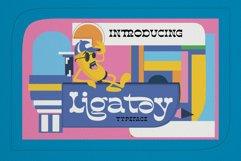 Ligatoy Product Image 1