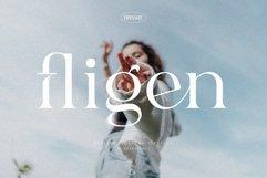Fligen - Stylish Serif Product Image 1