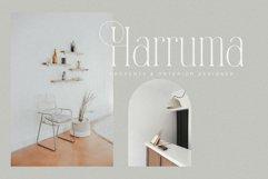 Ramashinta // Stylish Modern Serif Product Image 2