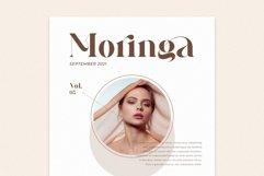 Galins Ligature Typeface Product Image 3