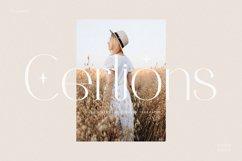 Cerlions - Classic Elegant Display Typeface Product Image 1