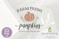 Farm Fresh Pumpkins, Fall Sign SVG, Autumn SVG Product Image 2