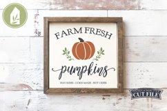Farm Fresh Pumpkins, Fall Sign SVG, Autumn SVG Product Image 1