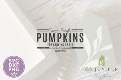 Farm Fresh Pumpkins SVG, Fall SVG, SVGs for Signs Product Image 2