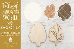 Fall Leaf SVG, Laser File SVG, Fall SVG Product Image 2
