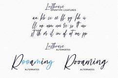 Losthouse Fancy Script Font Product Image 4