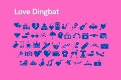 Web Font Love - Dingbat Font Product Image 2
