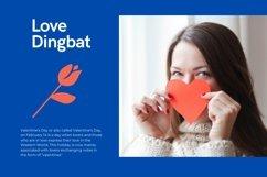 Web Font Love - Dingbat Font Product Image 5