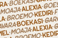 Macane - Sans Serif Display Font Product Image 3