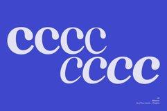 Macaw - Serif Typeface Product Image 3