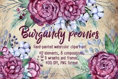 Burgundy peonies watercolor clipart set Product Image 1
