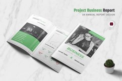 Project Business Annual Report Product Image 1