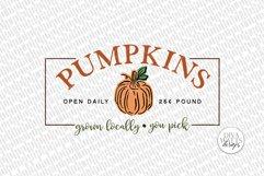 Pumpkins SVG | Farmhouse Autumn Pumpkin Patch Sign Product Image 2