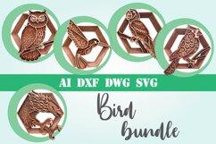 Bird bundle svg layered Multi layer mandala birds 3D Product Image 1