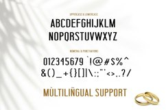 NEW ! Will You Marry Me - Font Duo Product Image 5
