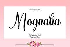 24 Font calligraphy - Bundle Product Image 4
