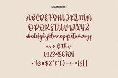 Mollekula Script Font Product Image 3