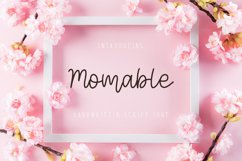 Momable Product Image 1