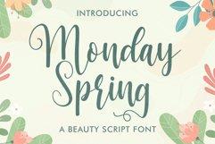 Monday Spring - Script font Product Image 1