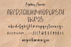 Web Font Monetary - Handwritten Script Font Product Image 4